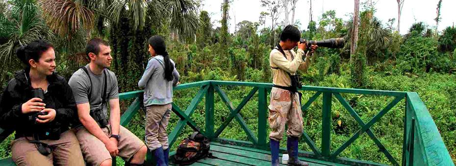 Selva de Manu 4 dias