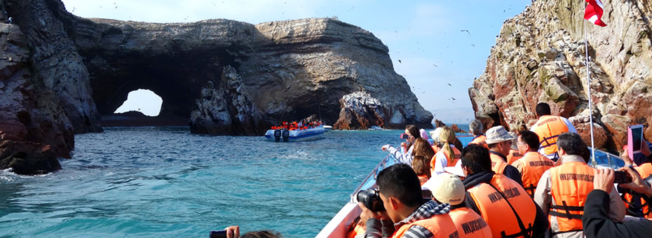 Islas Ballestas Tours 2 hrs