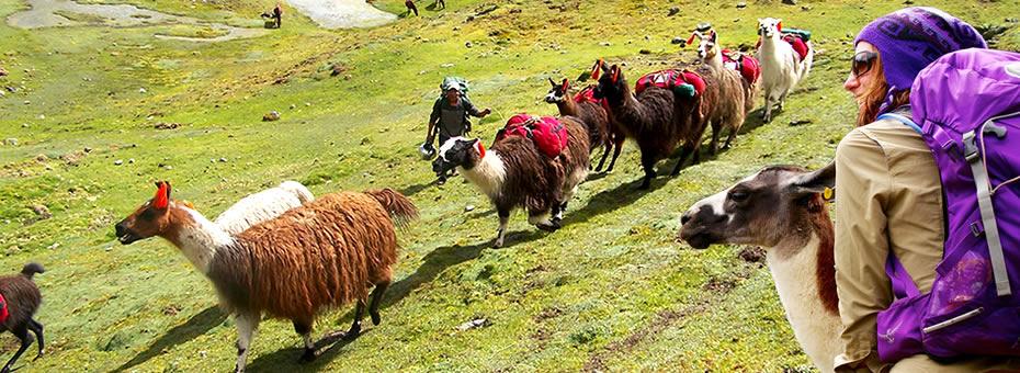 Caminata Lares a Machu Picchu 4 dias